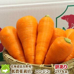 北海道富良野産 低農薬栽培 訳あり (ワケあり) (規格外) 洗い人参(にんじん) 20kg(SサイズからLサイズ込)【送料無料】 【業務用】