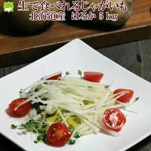 じゃがいも 送料無料 生で食べれる 北海道産 はるか 5kg 別途送料が発生する地域あり