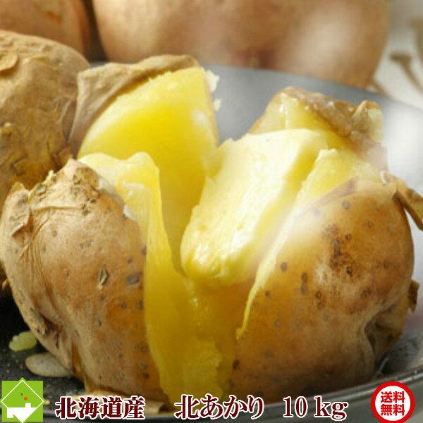 じゃがいも 送料無料 北海道 富良野産 ジャガイモ 北あかり 10kg (S〜Lサイズ込) お歳暮 ギフト対応【10P03Dec16】