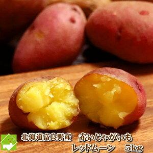 じゃがいも 北海道富良野産 赤い希少なジャガイモ レッドムーン Lサイズ 5kg 【送料無料】