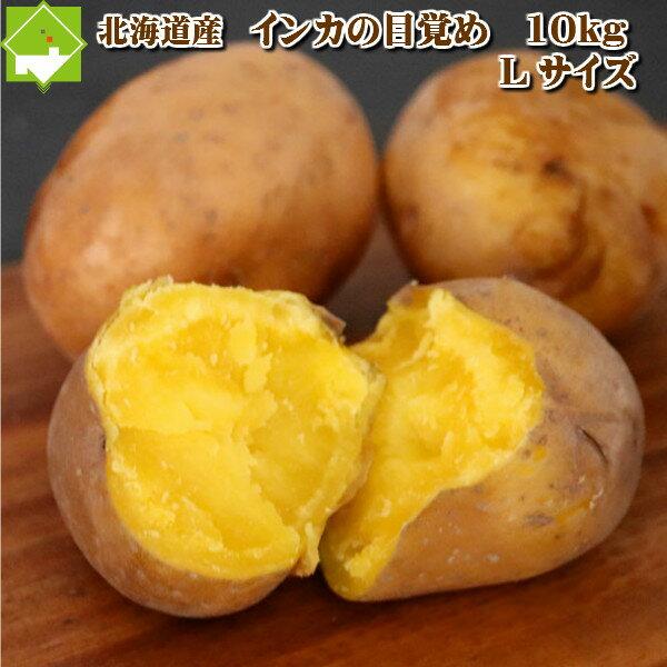北海道産 じゃがいも インカのめざめ(いんかの目覚め)Lサイズ 10kg 【送料無料】【10P03Dec16】