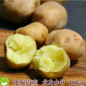 じゃがいも 送料無料 北海道 富良野産 ジャガイモ 北あかり 10kg (Mサイズ〜Lサイズ込) お歳暮 ギフト対応