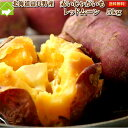 北海道富良野産 希少なジャガイモ レッドムーン5kg【送料無料】 【あす楽対応_北海道】【あす楽対応_関東】 【10P…