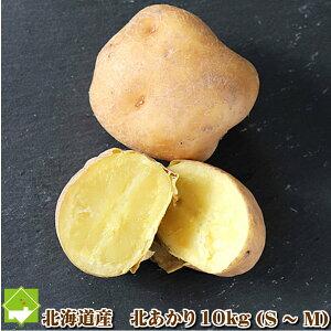 じゃがいも 送料無料 北海道 富良野産 ジャガイモ 北あかり 10kg(SサイズからMサイズ込)別途送料が発生する地域あり