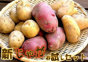 北海道産 じゃがいも(じゃが芋) 3種類5kgセット【メークイン・男爵・レッドムーン】【RCP】【10P03Dec16】