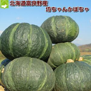北海道富良野産 坊ちゃんかぼちゃ(ぼっちゃんカボチャ) 1玉  【10P03Dec16】