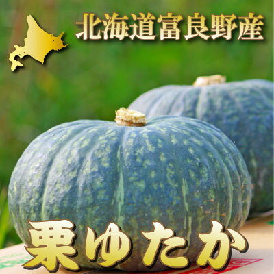 北海道富良野産 有機肥料であま〜い南瓜(かぼちゃ) 栗ゆたか 1玉(1.5kg前後)【10P03Dec16】