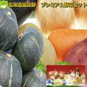 北海道富良野産プレミアム野菜セット10品目入り【送料無料】【お歳暮にも対応可】