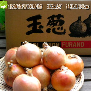 たまねぎ 北海道富良野産低農薬であま〜い 玉葱(タマネギ)Lサイズ10kg 【送料無料】