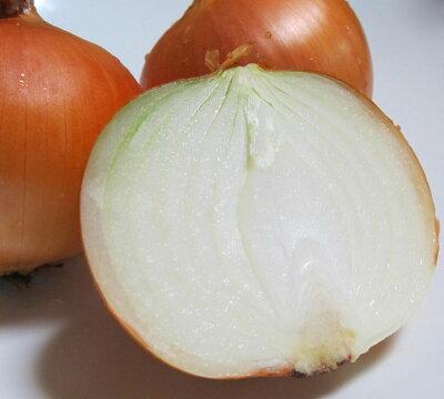 たまねぎ送料無料10kg北海道富良野産低農薬であま〜い玉葱特Lサイズ10kg【送料無料】【RCP】【10P03Dec16】