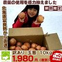 たまねぎ 北海道富良野産 低農薬であま〜い 玉葱 訳あり 10kg【送料無料】