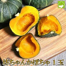 かぼちゃ 富良野産 坊ちゃんかぼちゃ(ぼっちゃんカボチャ) 1玉