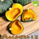かぼちゃ ハロウィン 北海道富良野産 坊ちゃんかぼちゃ 5玉 送料無料 別途送料が発生する地域あり