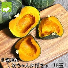 かぼちゃ 送料無料 北海道 富良野産 坊ちゃんかぼちゃ 15玉 別途送料が発生する地域あり