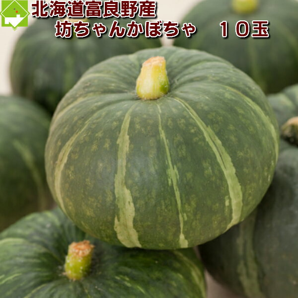 北海道富良野産 坊ちゃんかぼちゃ 10玉(ぼっちゃんカボチャ)【送料無料】