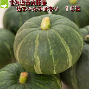 北海道富良野産 坊ちゃんかぼちゃ(ぼっちゃんカボチャ)  10玉【送料無料】