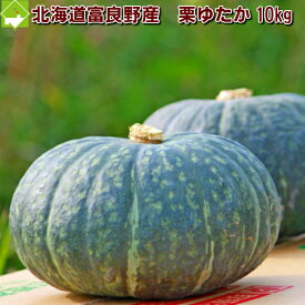 かぼちゃ 国産 北海道富良野産 有機肥料であま〜い南瓜(かぼちゃ) 栗ゆたか 10kg 【送料無料】