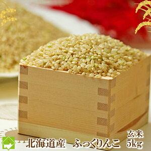 玄米 5kg 送料無料 北海道産 ふっくりんこ