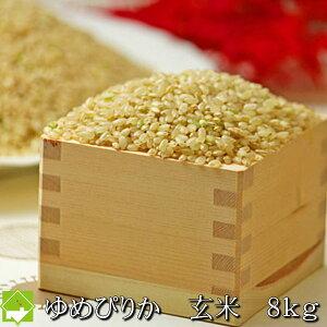 令和2年産 玄米 8kg 北海道産 新米 ゆめぴりか 送料無料