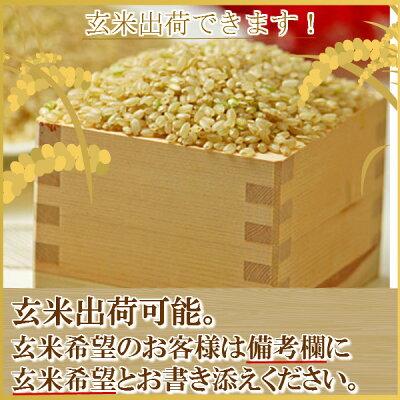 ゆめぴりか送料無料北海道産新米ゆめぴりか10kg【送料無料】【10P03Dec16】