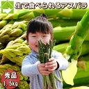 グリーンアスパラガス 北海道富良野産 1.5kg入り 送料無料