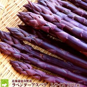【ご予約販売】北海道富良野産 希少!ラベンダーアスパラ(紫アスパラ) Lサイズ 100g