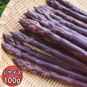 【ご予約販売】北海道富良野産 希少!ラベンダーアスパラ(紫アスパラ) Lサイズ100g