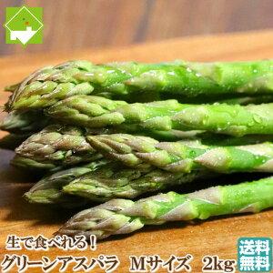 アスパラガス 送料無料 北海道 富良野産 グリーンアスパラ Mサイズ 2kg 別途送料が発生する地域があります