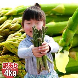 訳あり グリーン アスパラガス 4kg 北海道 富良野産 送料無料 楽天スーパーSALE