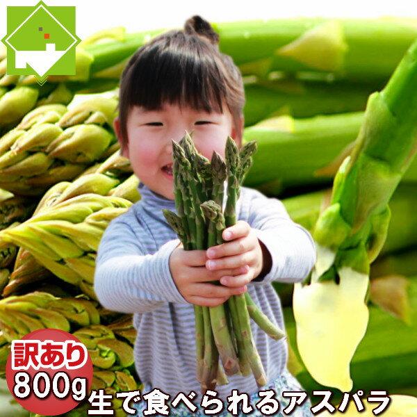 アスパラガス グリーン 訳あり800gSサイズからLサイズ混み 北海道ふらの産【生】で食べられる 送料無料 別途送料が発生する地域あり