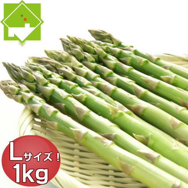 アスパラ グリーン Lサイズ 1kg 北海道富良野産 ハウス栽培 送料無料