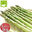 アスパラ グリーン Lサイズ 1kg 北海道富良野産 ハウス栽培 送料無料 【グルメ_DL】