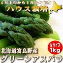 アスパラ グリーン Mサイズ 1kg ハウス栽培 北海道富良野産【送料無料】【ご予約販売】【グルメ_DL】