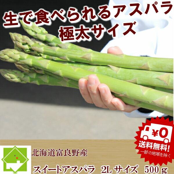 ハウス栽培 北海道富良野産 グリーンアスパラ 極太 2Lサイズ 500g 【送料無料】【10P03Dec16】