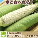 北海道富良野産 激甘トウモロコシ ピュアホワイト 10本【10P03Dec16】