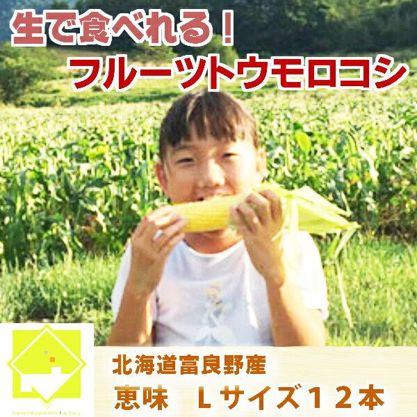 【平成30年発送】とうもろこし 北海道 生で食べれる 富良野産  恵味 Lサイズ12本入り 送料無料10P03Dec1610P23Apr16