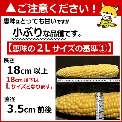 北海道富良野産2色のとうもろこしセットピュアホワイト5本・恵味5本送料無料【DEAL】
