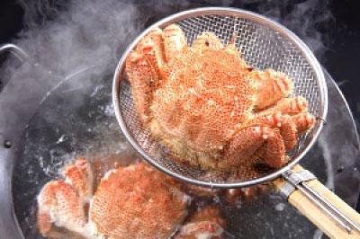 北海道産 毛蟹 1kg 2尾から3尾入り 送料無料 毛ガニ