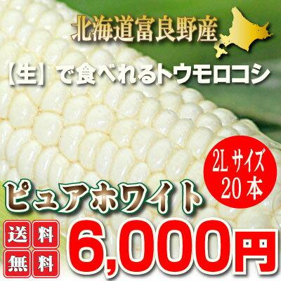 【送料無料】北海道富良野産 激甘トウモロコシ ピュアホワイト 20本【10P03Dec16】