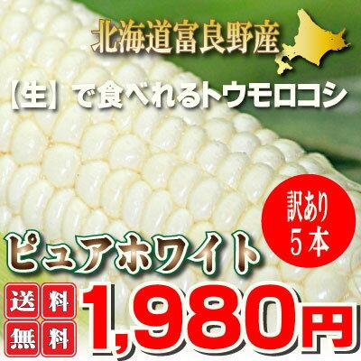 北海道富良野産 白い とうもろこし 訳あり(わけあり)ピュアホワイト 5本入 【送料無料】 【業務用】 【訳まち】【ワケ待ち】