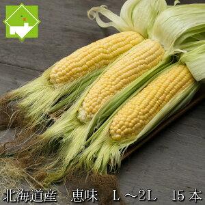 生で食べれるとうもろこし 北海道富良野産 フルーツとうもころこし 恵味 L〜2Lサイズ 15本入り 送料無料甘いけど小さい品種別途送料の発生する地域あり