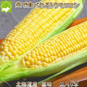 とうもろこし 北海道富良野産 生で食べれるトウモロコシ 恵味(めぐみ) 2Lサイズ 10本入り 【送料無料】