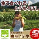 とうもろこし 北海道富良野産 生で食べれるトウモロコシ 恵味(めぐみ) 2Lサイズ 10本入り 【送料無料】【RCP】P25Apr15【10P03Dec16】