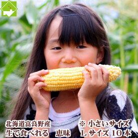 フルーツとうもろこし 北海道 富良野産 恵味 めぐみ Lサイズ 10本入り 送料無料 別途送料加算の地域あり