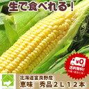 北海道富良野産 とうもろこし 恵味 秀品 2L 12本 【送料無料】【10P03Dec16】