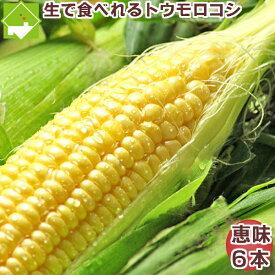 フルーツ とうもろこし 北海道 富良野産 恵味 2Lサイズ 6本送料無料 別途送料が発生する地域あり