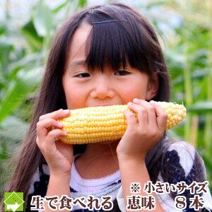 【生】で食べれるトウモロコシ 北海道富良野産  恵味 Lサイズ 8本入り 送料無料