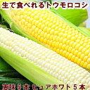 とうもろこし 北海道富良野産 秀品 2Lサイズ ピュアホワイト5本・恵味(めぐみ)5本  送料無料