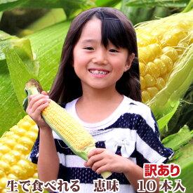【生】で食べれるトウモロコシ 北海道 富良野産 訳あり 恵味 Mサイズ 10本入り 送料無料