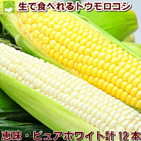 とうもろこし 北海道 富良野産 ピュアホワイト6本 恵味6本 送料無料